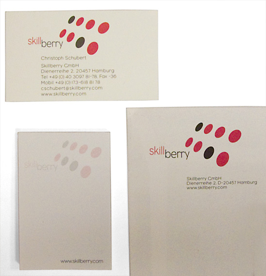 20010301-Skillberry-business-card-logo