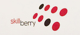 Skillberry_small-logo
