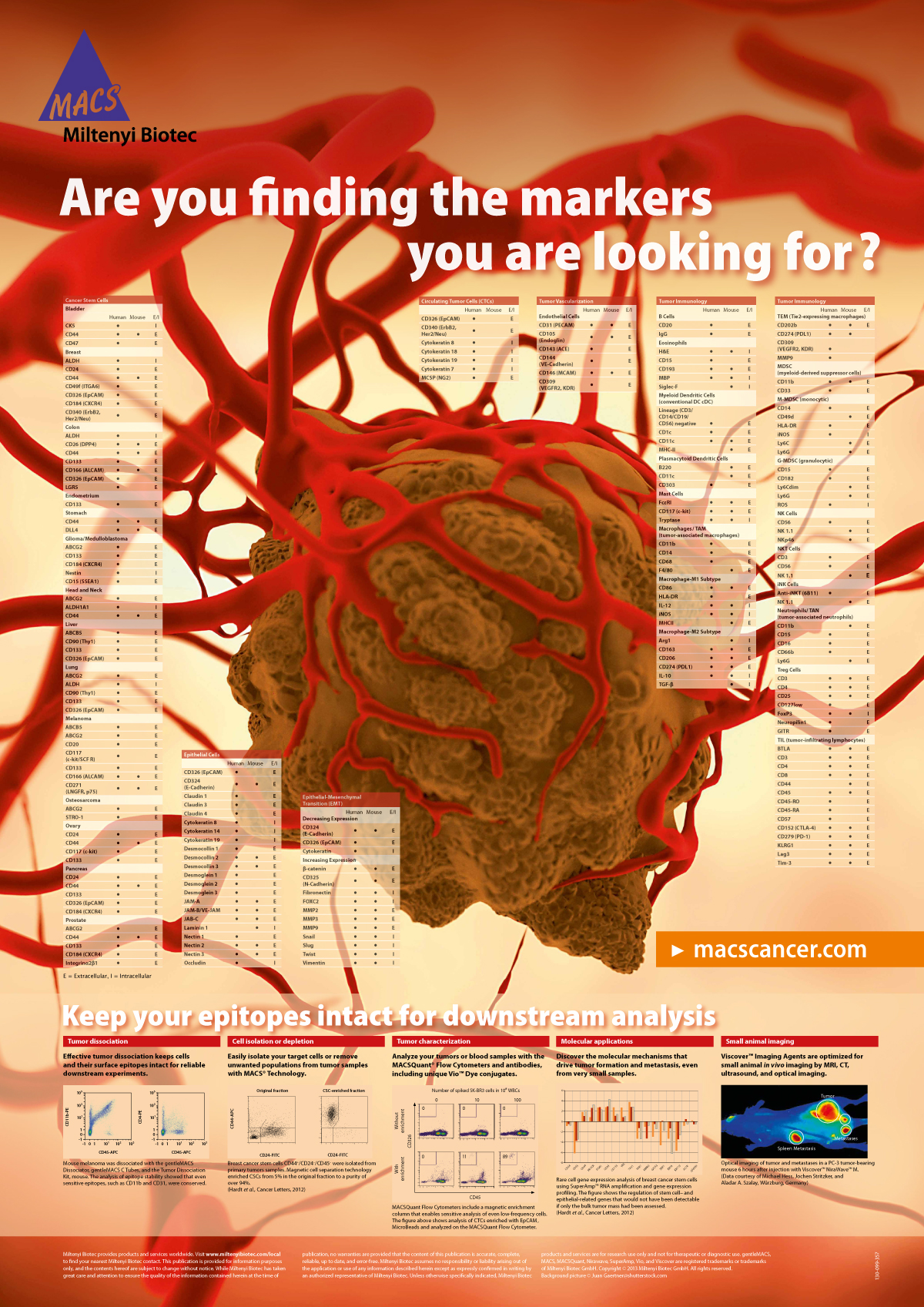 Tumor marker poster, done for cancer researchers